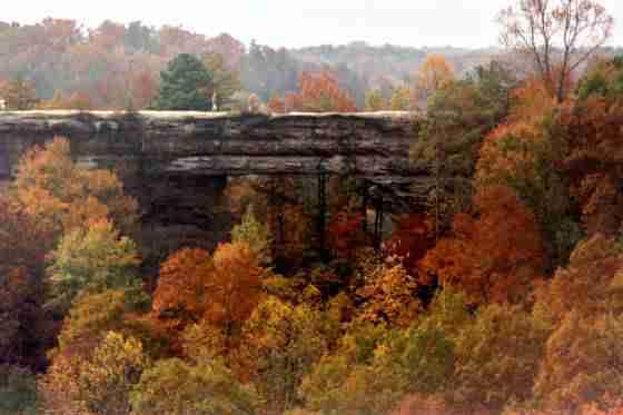 Natural Bridge - Fall