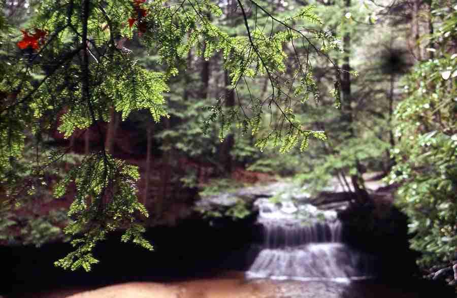 Red River Gorge - Creation Falls - Tim Webb (56)